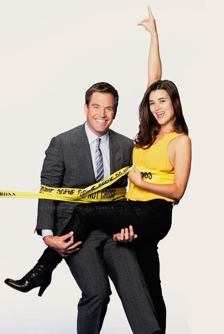 cote de pablo and michael weatherly relationship