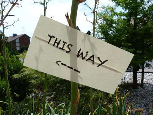 This way, that way, up, or yonder...?