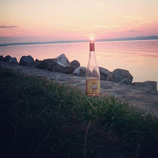 #vargaborinsta #wine #rosewine #varga #vargapincészet #siofok #ezüstpart #naplemente #chill #ins #in #instalike #instadaily #instamood #InstaSize #borászat #winetasting #bor #insta #instadaily #good #happiness #happyness