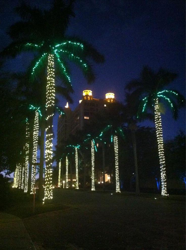 71 Best Sarasota Fl Realtor Marina Slater Images On