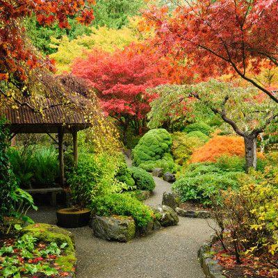 Jak funkcjonalnie rozplanować przestrzeń w ogrodzie?