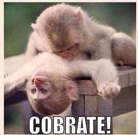 cobrate