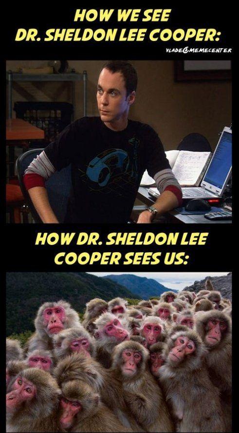 Big Bang Theory Memes