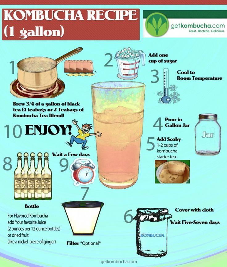 50 Amazing Kombucha Recipes and How To Make Kombucha Soda