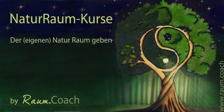 NaturRaum-Kurse – Kraftorte bereisen und Kontakt mit den Naturwesen aufnehmen.  Der (eigenen) Natur Raum geben!