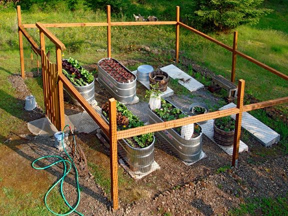 17 Best Images About Diy Galvanized Stock Tank Planters 400 x 300