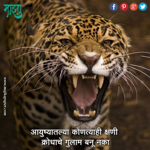 17 Best Images About Marathi Quote. On Pinterest