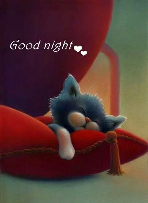 Sleep tight. I'll see you in my dreams ❤❤