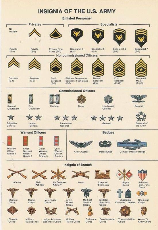 us military insignia chart: Us army insignia on pinterest us army soldier military ranks
