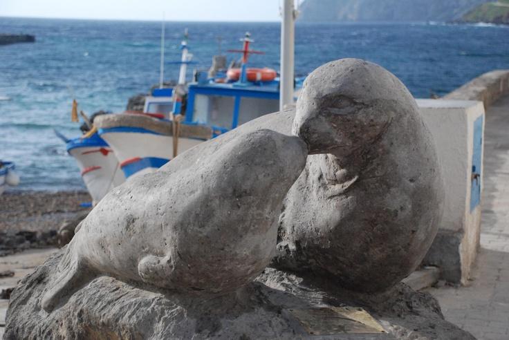 Famiglia Cristiana  Negli anni Cinquanta nuotava davanti alla Grotta del Cammello di Marettimo, la più lontana delle Isole Egadi.  Questo mammifero marino frequenta solo acque pulitissime e tranquille.  Non sono più di 400 gli esemplari in tutto il mondo.  Dopo mezzo secolo, negli ultimi anni, la foca è tornata a frequentare le acque dell'isola. Se non riuscite a vederla, fermatevi al porto ad ammirare la statua in pietra vulcanica, che ritrae una femmina col suo cucciolo.