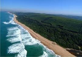 Salt Rock South Africa - she would love it