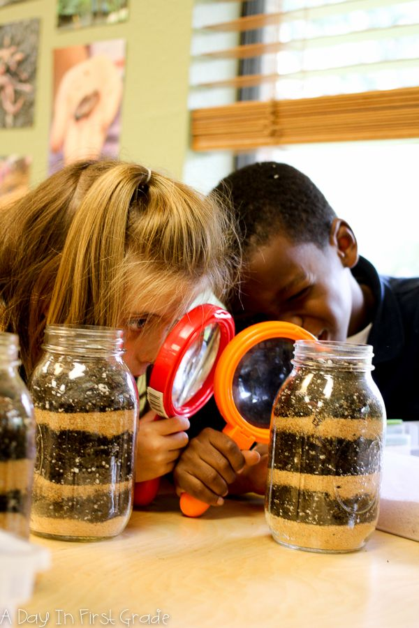 Kindergarten: where young scientists are born! A unit on worms, inquiry, and hands-on learning.