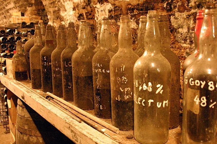 Underground cellars of Michel Couvreur