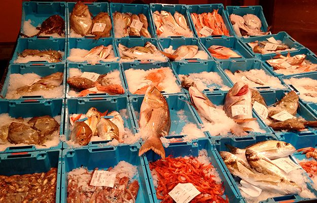 Mariscos y Pescado restaurante en Barcelona :: Fish Restaurant Barcelona :: Comer pescado en Barcelona :: El mejor restaurante de pescado en Barcelona :: pescado fresco todos los días de Terracina
