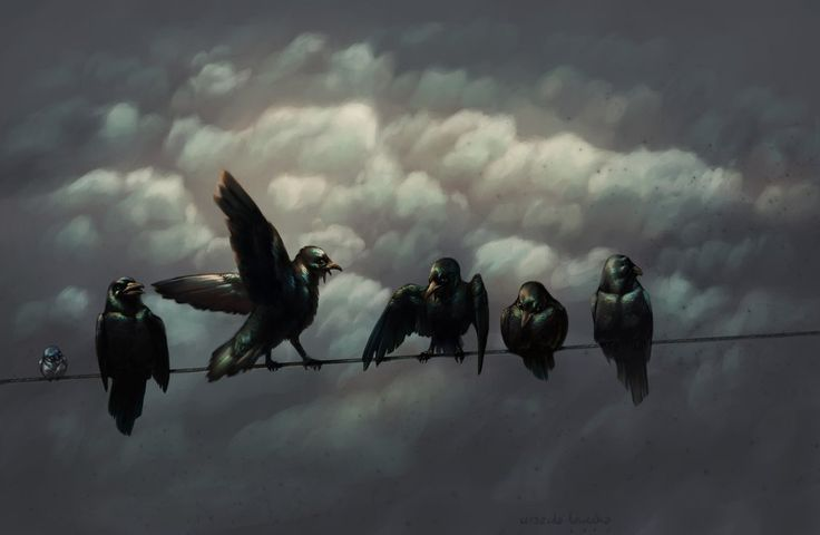 Crows by Nivailis