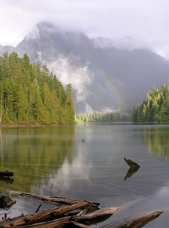 On Vancouver Island, I had the 9-site Schoen Lake campground all to myself, so I chose the site with this view.