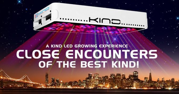 Weed Recommend: Kind LED Grow Lights #cannabis #weed #recommend #420 #hemp #dagga #bhang #marijuana #maryjane #ganja #cultivation #horticulture #ledgrowlights #LED #GYO #Homegrown #GrowLight #Energy #recommended