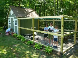 Super cute coop! Can't wait to get ours all spruced up too! Our new run will be similar to this one.