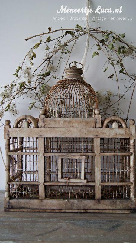 Oude vogelkooi/ Old birdcage *SOLD*   Sold   meneertjeluca