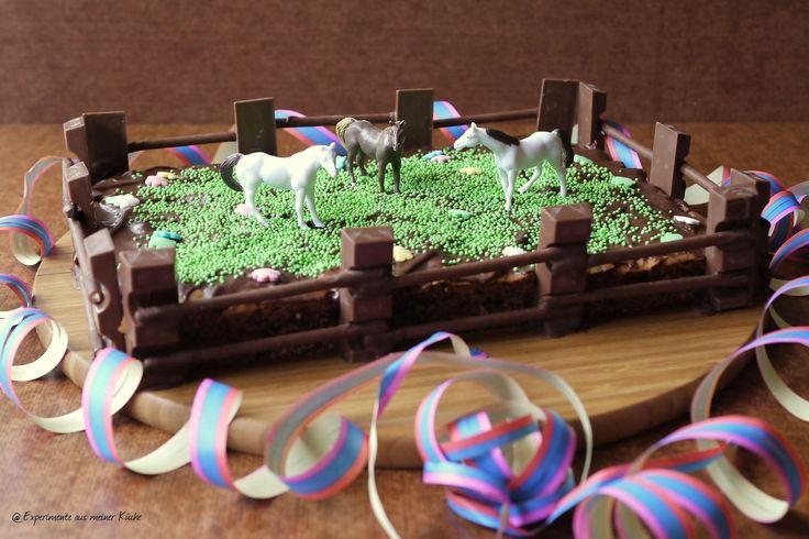Pferdekuchen :) - http://www.experimenteausmeinerkueche.de/2016/08/kindergeburtstag-1-pferdemottoparty.html