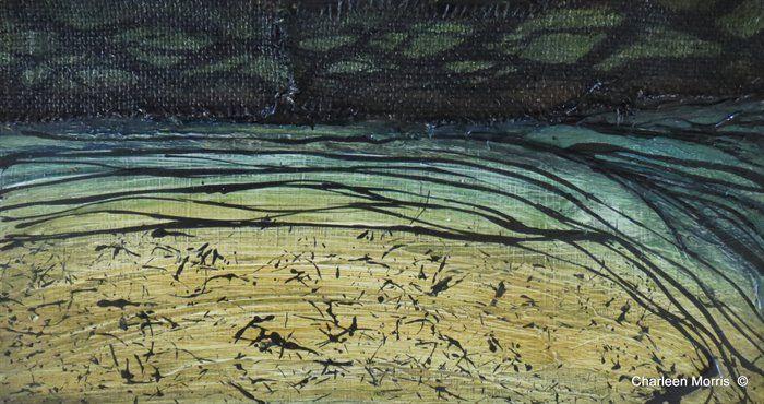 Tallebudgera Creek - A sense of place - Gold Coast by Charleen Morris