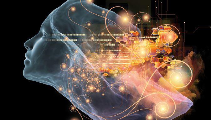 La théorie des «intelligences multiples» prédit l'existence de huit formes différentes d'intelligence. Nous pouvons aujourd'hui en observer sept au sein de notre cerveau.