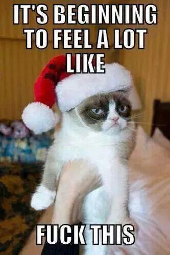 Grumpy Cat fuck this #Christmas #meme #humor