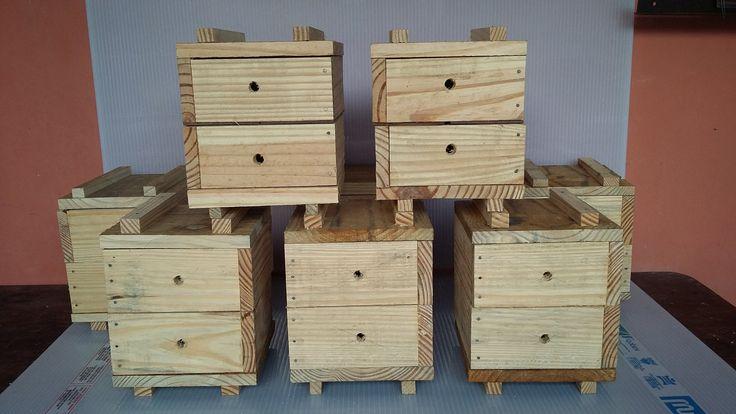 Como Fazer Caixa Racional  1- Colmeia abelha sem ferrão Com Plano de Corte
