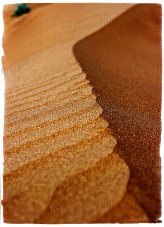The bright colors of the desert.  #desert  #sand #nature #freelancecreative #freelancediscount #freelancer