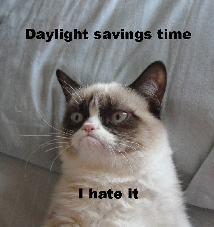 Image result for losing an hour of sleep because of daylight savings time
