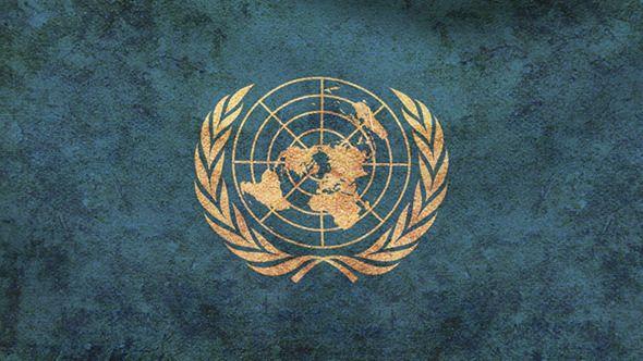 united nations flag members