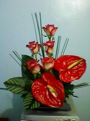 Videira em Flor: Arranjos de Antúrio