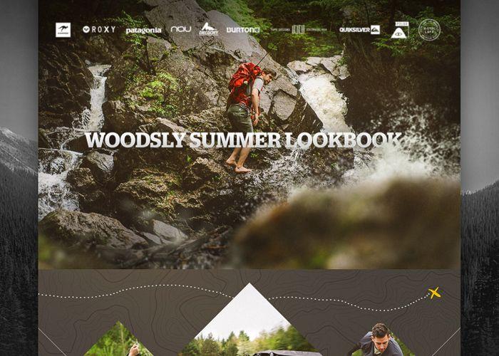 http://www.awwwards.com/best-websites/woodsly-summer-2014-lookbook  DISCOVER