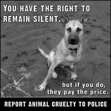 Report animal cruelty!!
