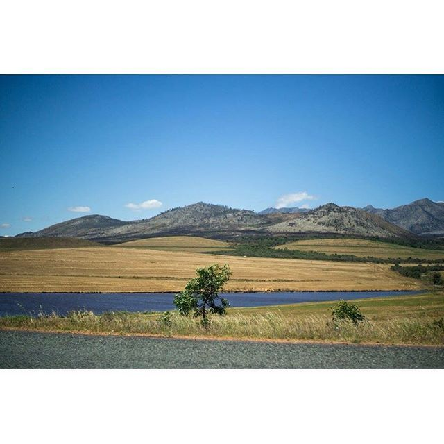 Winds of Africa .1 See Facebook.com/linn.degroot #africa #african #landscape #photography #instgood #field #grass #scene #view #ontheroad #capetown #skyline