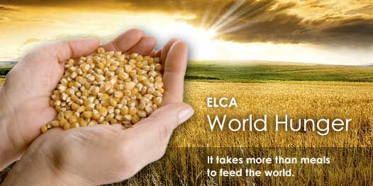 ELCA World Hunger is a comprehensive and sustainable program that uses multiple strategies—relief, development, education, and advocacy—to address the root causes of hunger and poverty. ELCA World Hunger responds to neighbors around the corner and around the world.