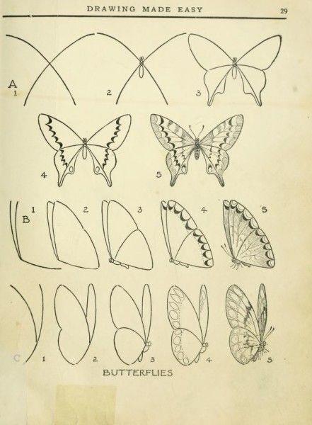 Como dibujar mariposas