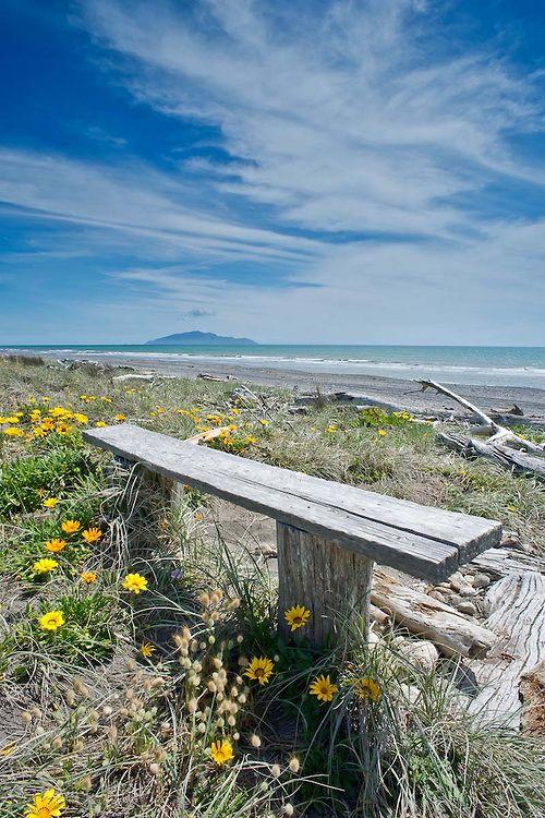 Seat on Otaki Beach, Kapiti Coast, New Zealand. Ref No: NZNK169042