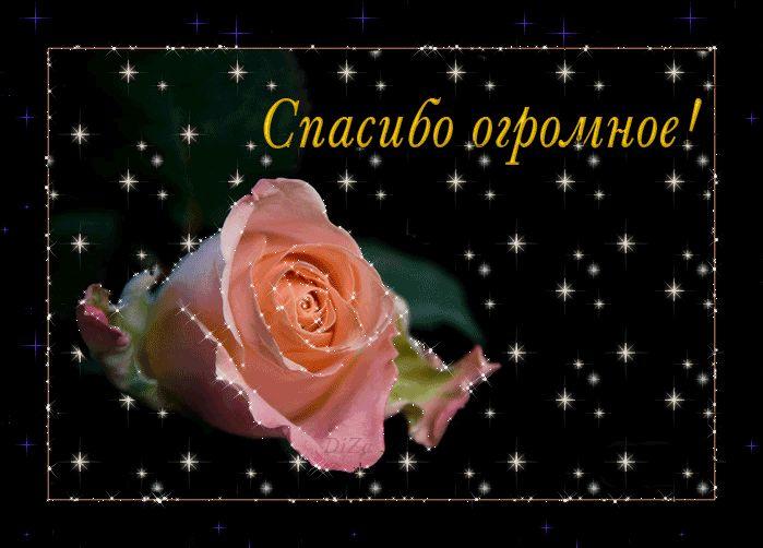 А у меня сегодня День Рождения!!!. Обсуждение на LiveInternet - Российский Сервис Онлайн-Дневников