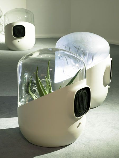 Bel-Air is a filtration system designed by Mathieu Lehanneur, which uses living plants to purify the air indoors.