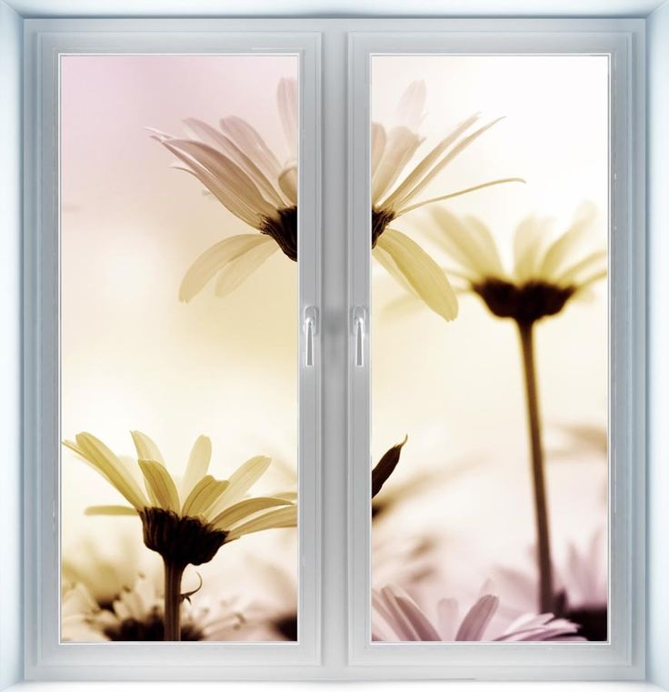 Majestic Wall Art - Daisies Instant Window, $44.00 (http://www.majesticwallart.com/instant-windows/daisies-instant-window)