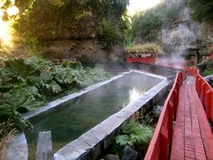 Termas Geometricas: Hot springs near Pucon, Chile I went here w my parents, it was paradise!