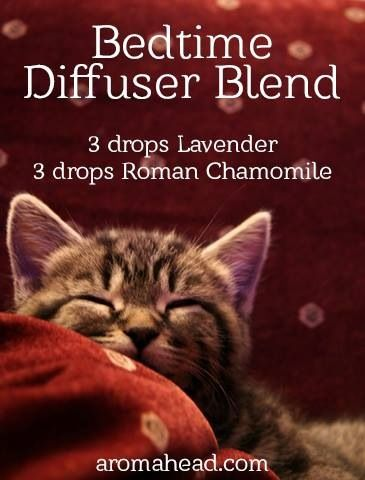 Bedtime Diffuser Blend ~ http://www.sparknaturals.com/?affiliates=110 ;  Use coupon code REVIVE for an additional 10% discount at check out.