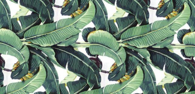 hinson martique wallpaper palm leaf