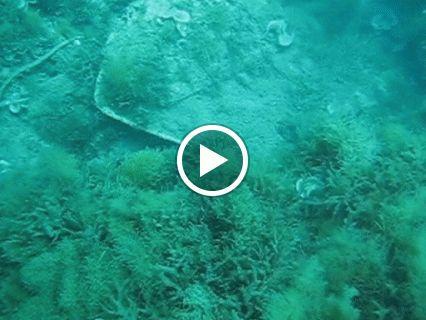 restos de un barco en Denia