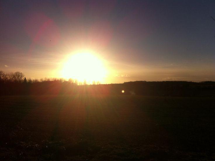 Sunshine :D