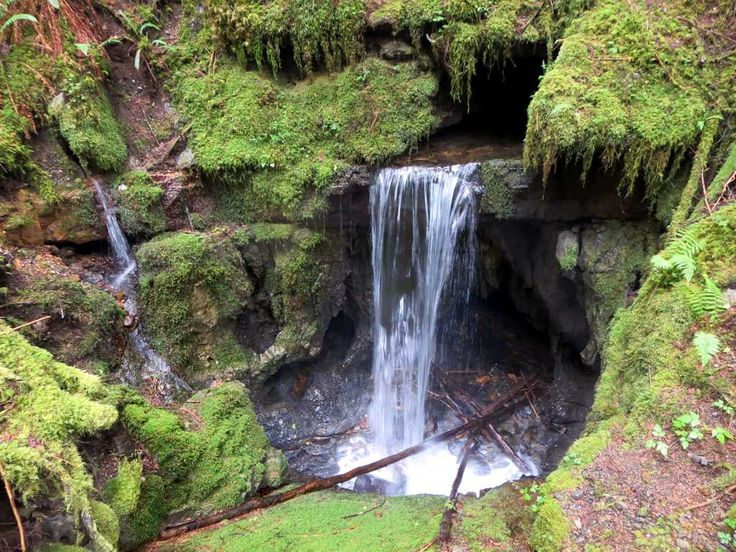 The Eternal Fountain on the Alice Lake Loop on northern Vancouver Island, British Columbia, Canada, emerges from an underground stream.