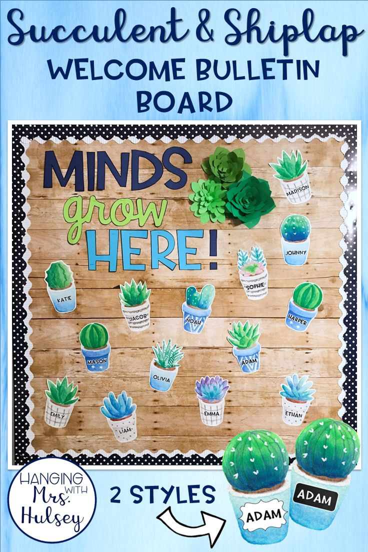 This editable welcome bulletin board is easy and simple to put up! Styled after a succulent and shiplap theme-- it would also fit with a rustic, farmhouse, or chalkboard themed classroom!