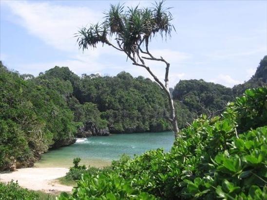 Sempu island, hidden landscape of java