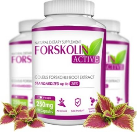 Forskolin Active - ??t? ???a? ? ?????????? ????????s? ???